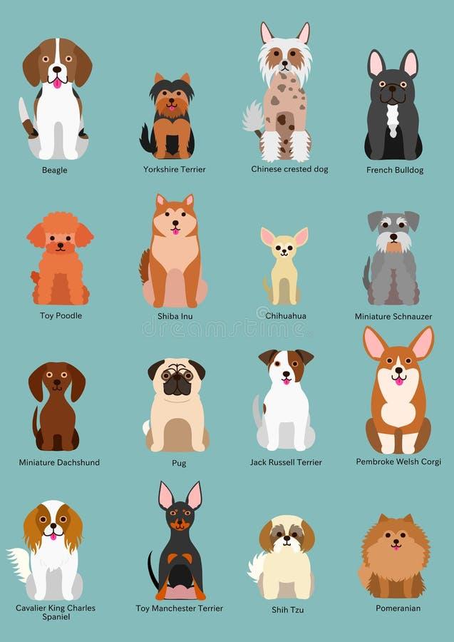 Petite collection de race de chien illustration libre de droits