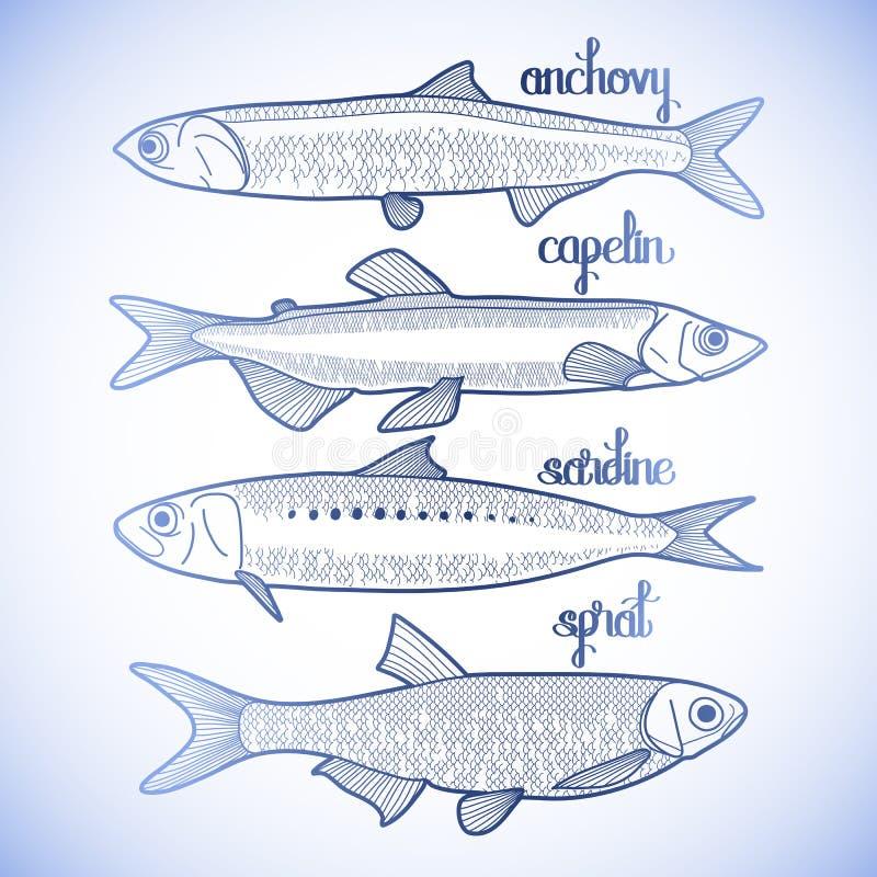 Petite collection graphique de poissons illustration de vecteur