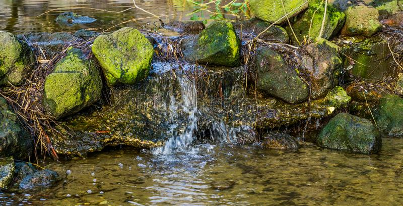Petite crique dans la fin avec une petite cascade, paysage de nature, ressort d'eau dans les montagnes images libres de droits