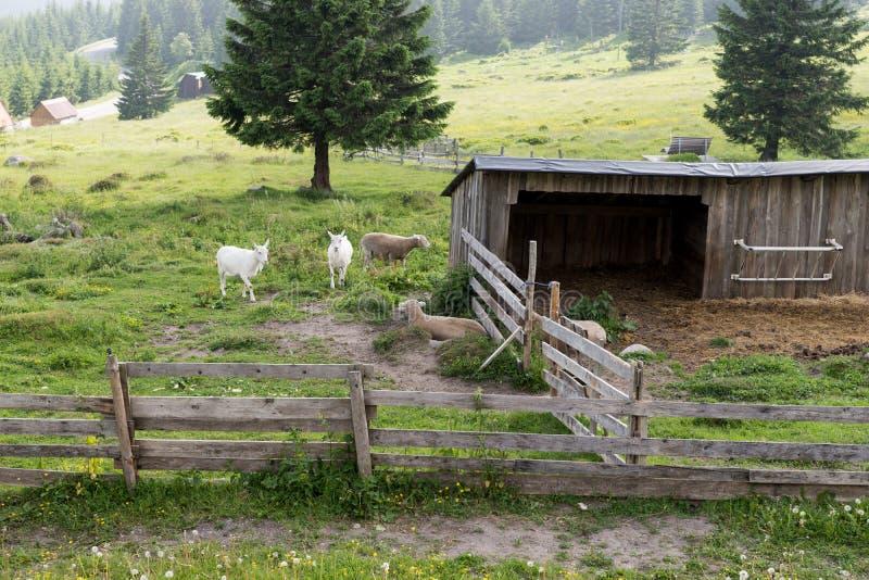 Petite ferme dans les montagnes images stock