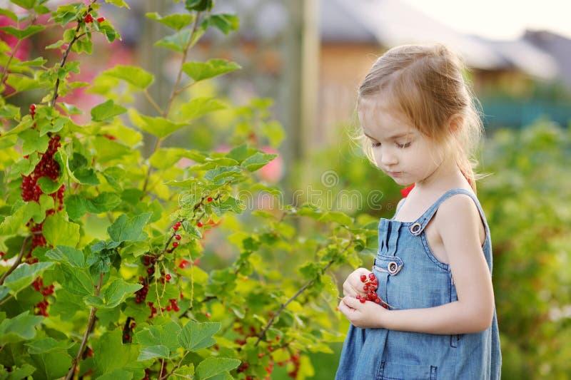 Petite fille adorable avec les groseilles rouges photo stock