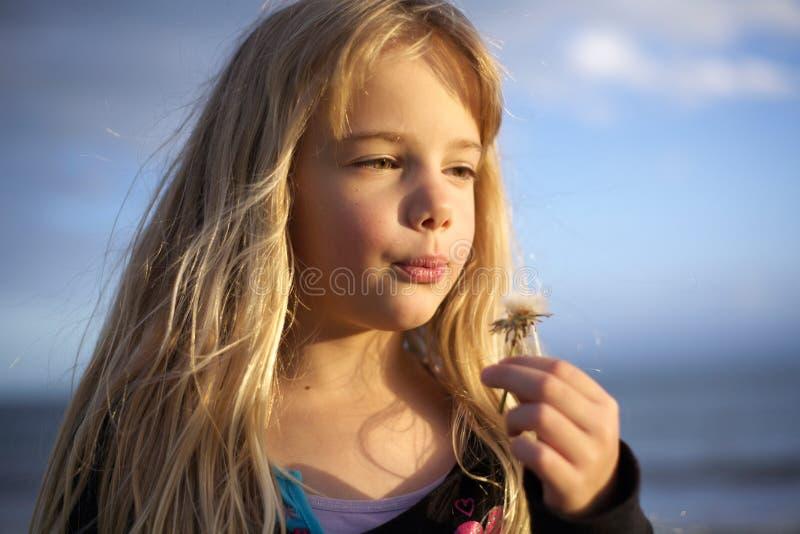 Petite fille avec la fleur de pissenlit photo stock