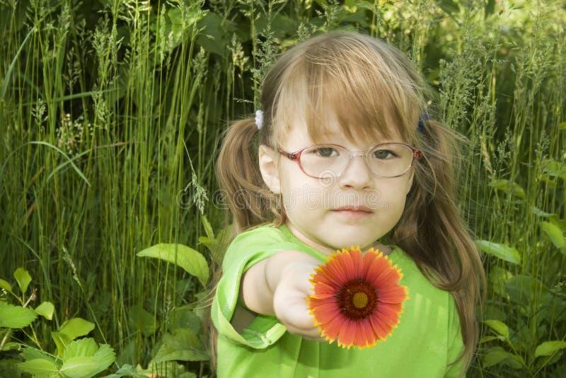 Petite fille avec la fleur rouge photo stock
