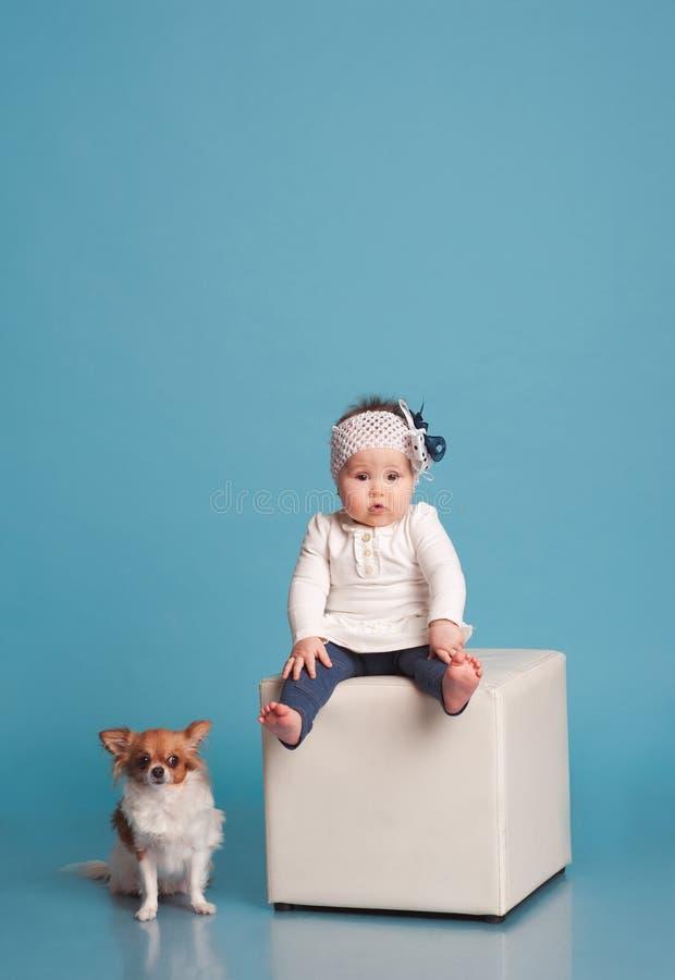 Petite fille avec le chien image stock