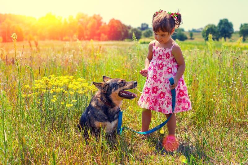 Petite fille avec le grand chien photographie stock