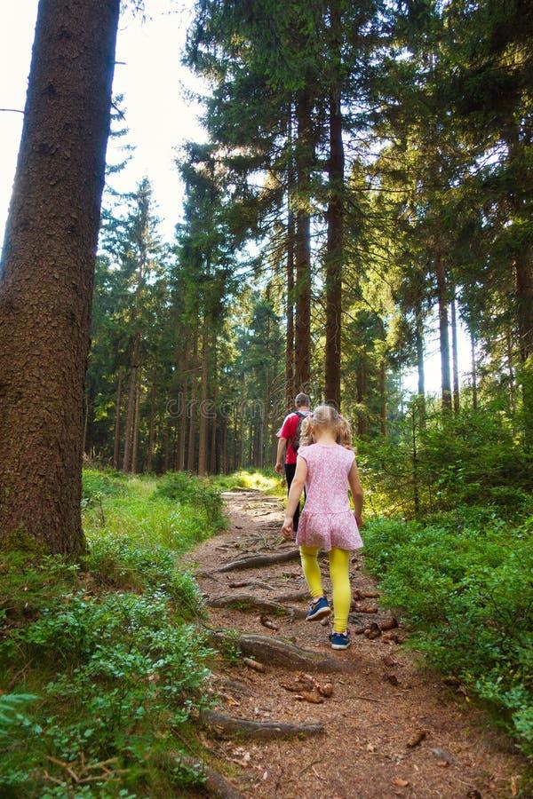 Download Petite Fille Avec Son Père Marchant Dans La Forêt Image stock - Image du parent, normal: 77153823