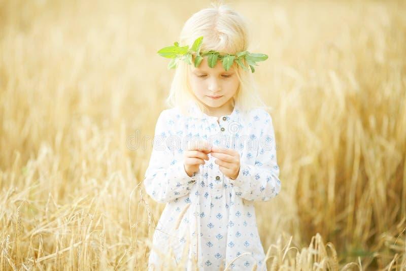 Petite fille blonde dans le domaine photo stock