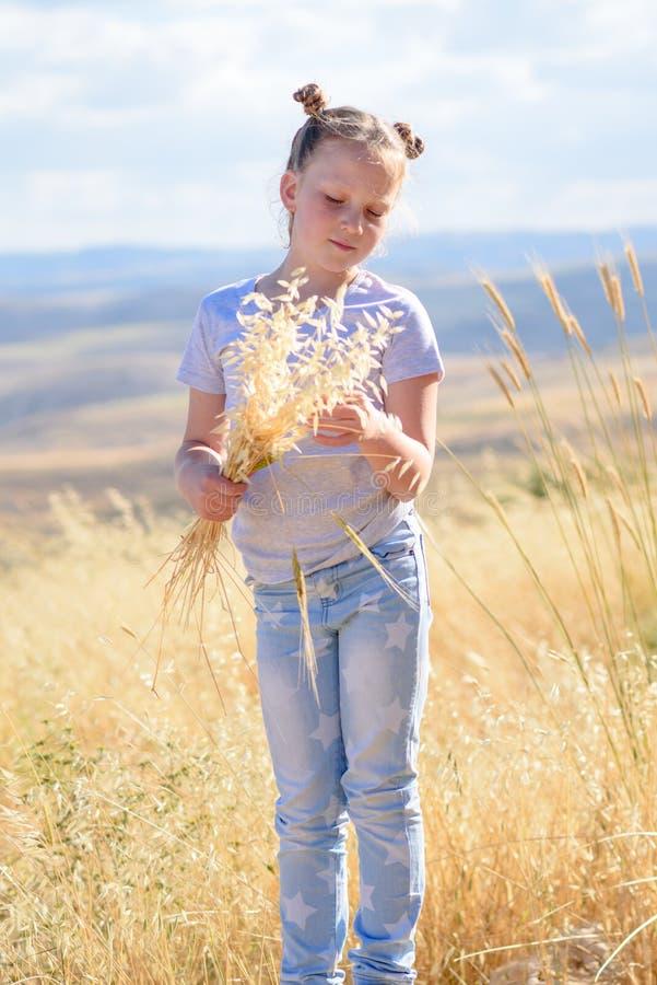 Petite fille blonde tenant des transitoires de blé et des oreilles d'avoine dans le domaine d'or de récolte images stock