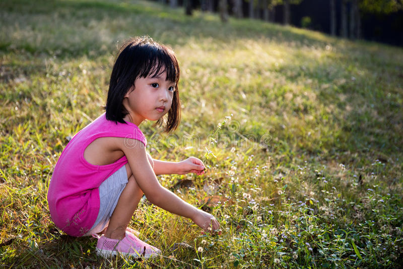Petite fille chinoise asiatique heureuse sélectionnant les fleurs sauvages images stock