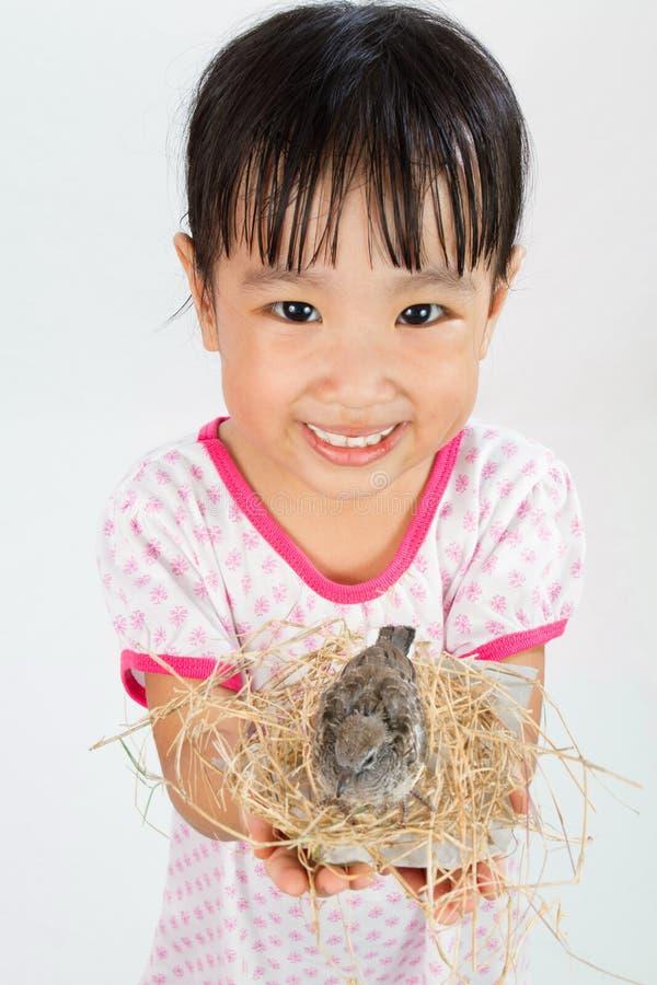 Petite fille chinoise asiatique tenant le petit oiseau dans des mains photos stock