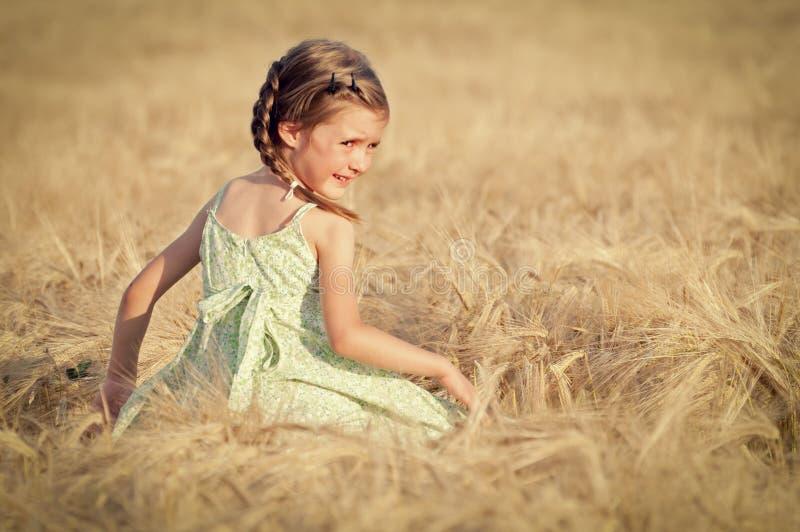 Petite fille dans le domaine de blé photos stock