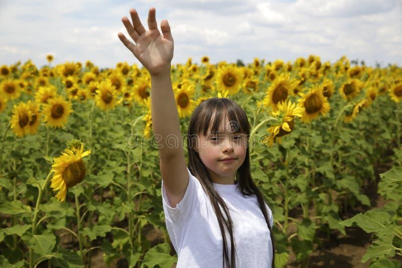 Petite fille dans le domaine de tournesols photographie stock