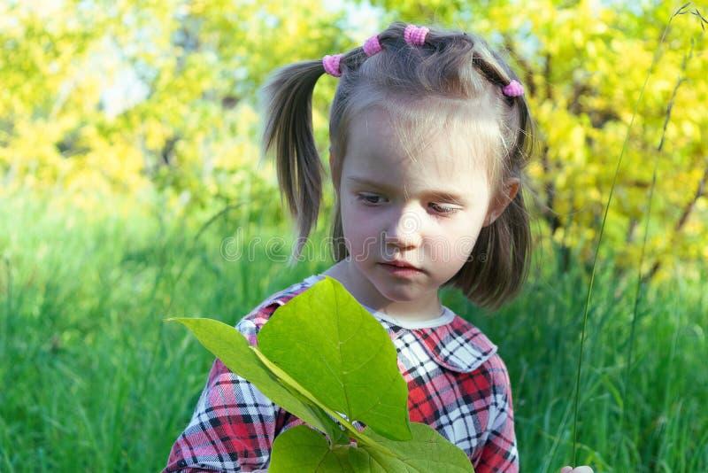 Petite fille dans une robe de plaid tenant une grande feuille d'une usine Elle le regarde Elle est en parc dehors et se reposant  photos libres de droits