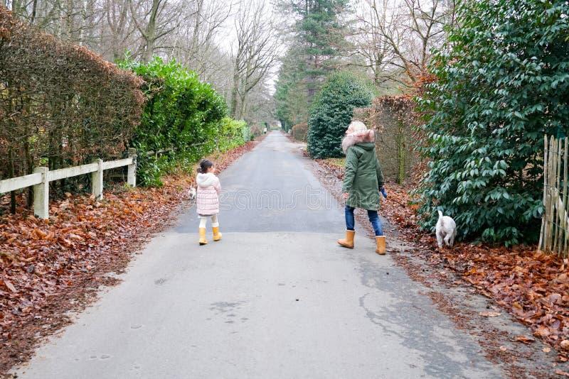 Petite fille de grand-mère et de petit-enfant marchant ainsi que les chiens dans le secteur de banlieue de campagne images stock
