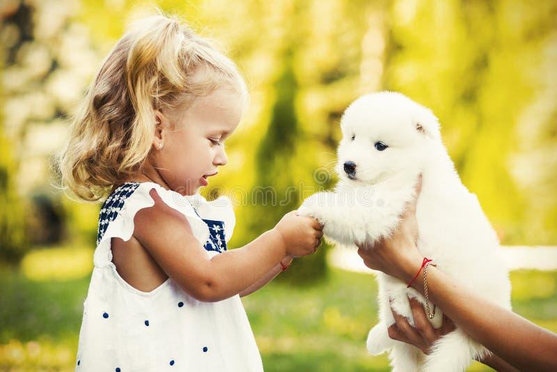 Petite fille embrassant sa race de Samoyed de chiot images stock