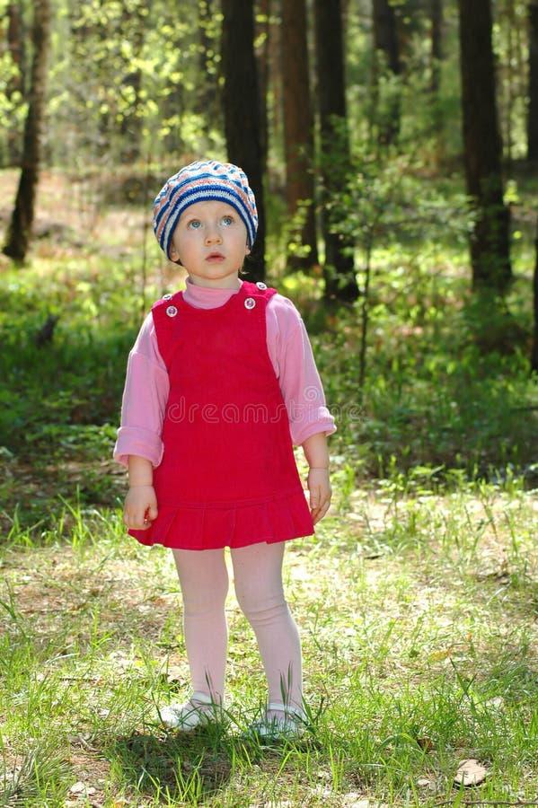 Petite fille en bois photo stock