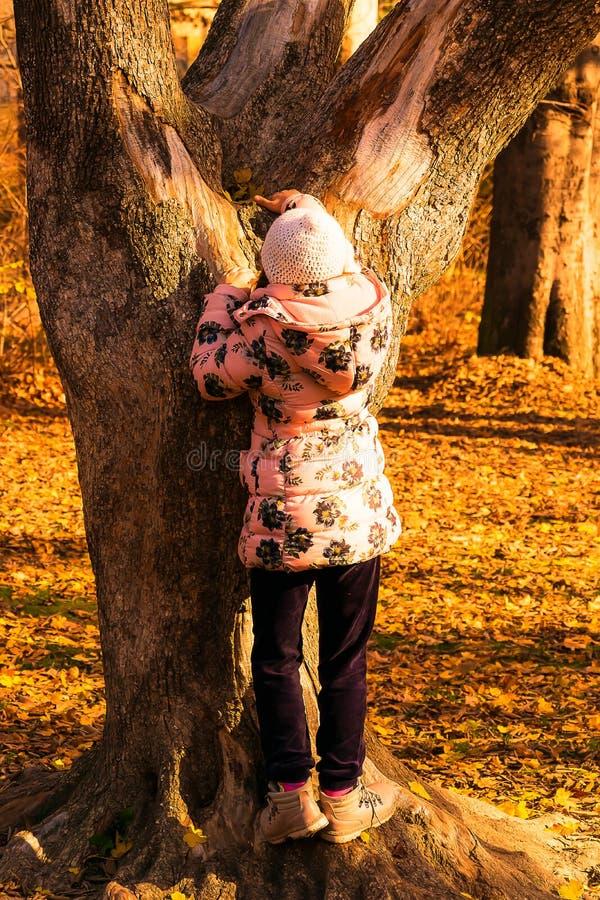 Petite fille et arbre photo stock