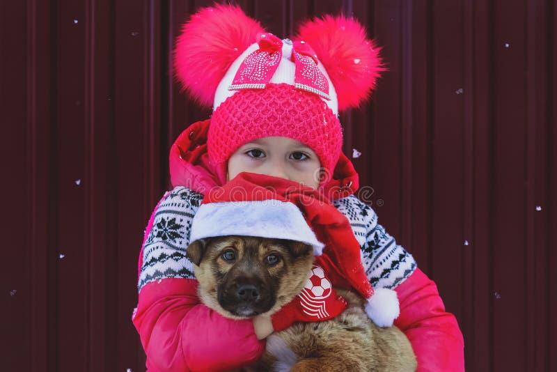 Petite fille et chien à Noël photographie stock
