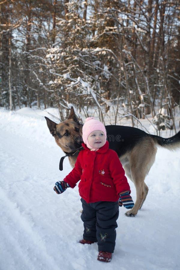 Petite fille et chien de Multibred extérieur photographie stock libre de droits