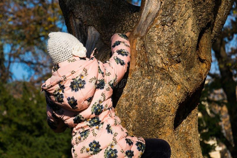 Petite fille grimpant à un arbre photo stock