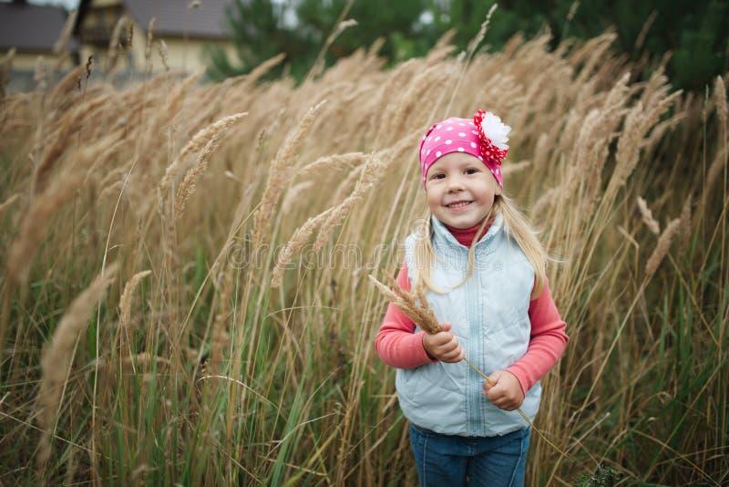 Petite fille heureuse dans la haute herbe photo libre de droits