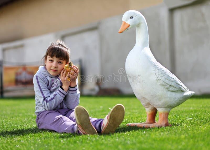 Petite fille jouant avec le caneton sur la pelouse près de l'oie photo stock