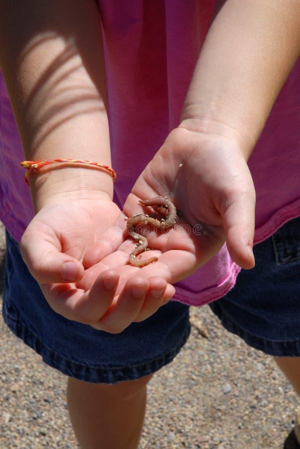 Petite fille jouant avec le ver de terre photos stock
