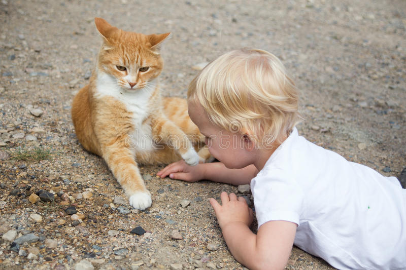 Petite fille jouant le chat images stock