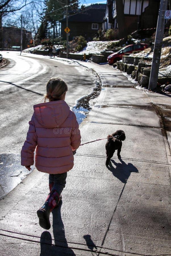 Petite fille marchant un petit chien image libre de droits