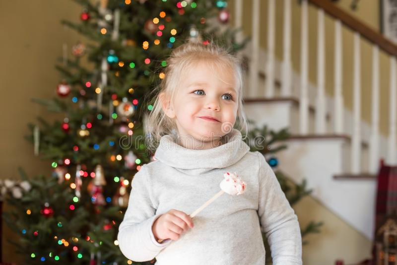 Petite fille mignonne au temps de Noël image stock