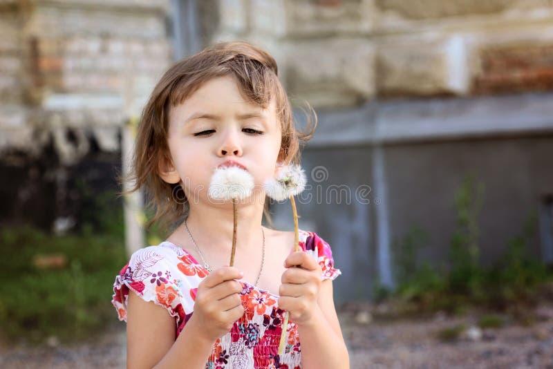 Petite fille mignonne soufflant sur un pissenlit photographie stock