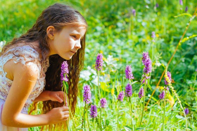 petite fille observant une abeille polliniser les fleurs sauvages dans un domaine image libre de droits