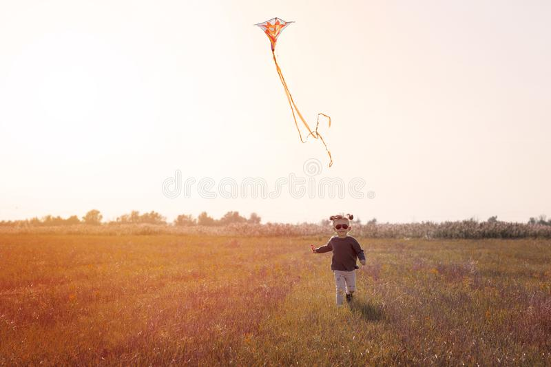 Petite fille pilotant un cerf-volant dans le domaine photo stock