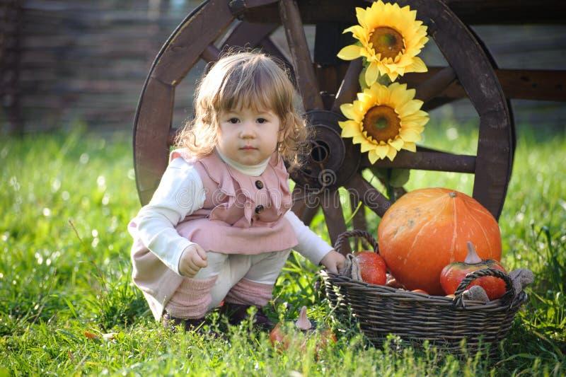 Petite fille près de grands potiron et tournesol photographie stock