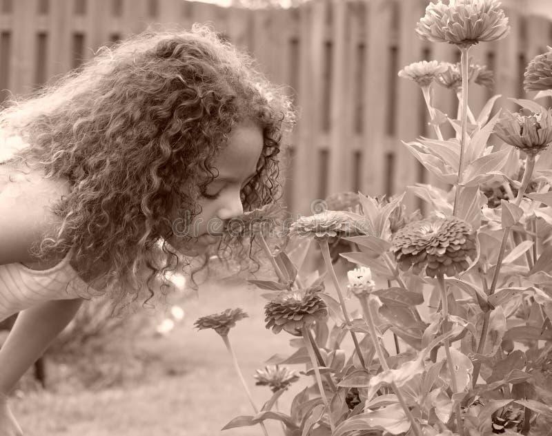 Petite fille précieuse photographie stock libre de droits