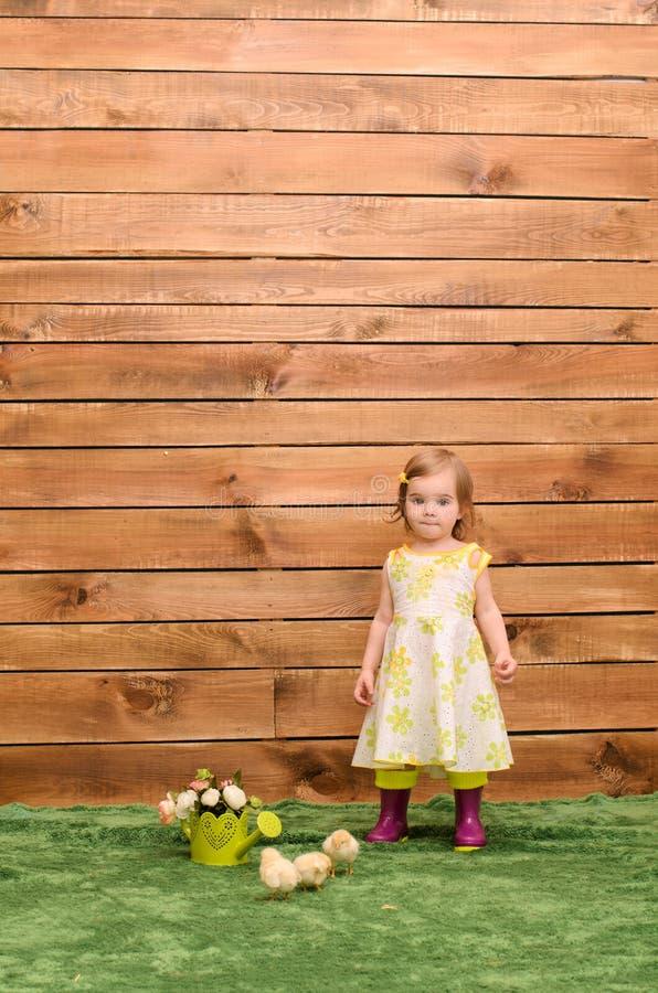 petite fille se tenant à côté des poulets photo stock