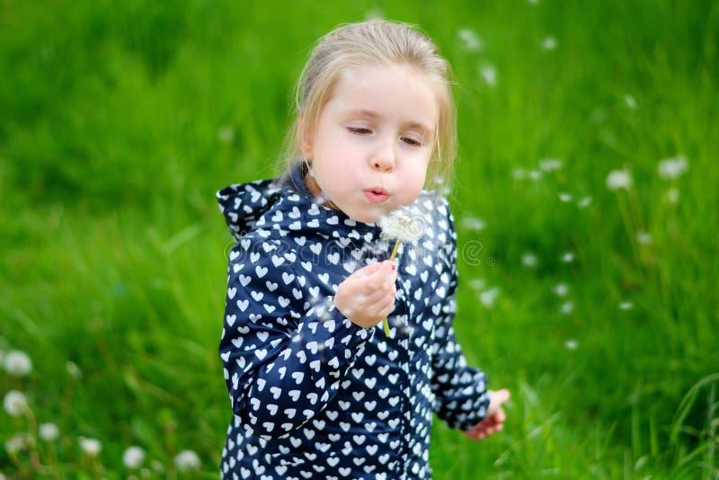 Petite fille soufflant sur le pissenlit blanc photos stock