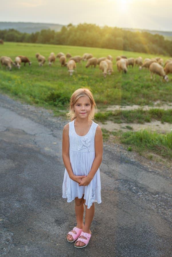 Petite fille sur des pâturages avec des moutons photographie stock libre de droits