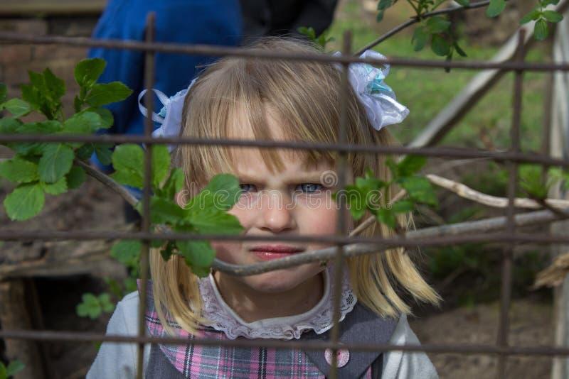 Petite fille sur la barrière photos stock