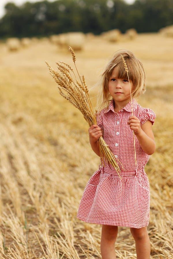 Petite fille sur le champ avec du blé photo libre de droits