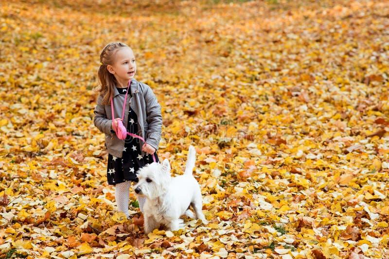 Petite fille sympa jouant avec son chien dans le parc d'automne Belle période d'automne Joyeux enfant avec un chien photos stock