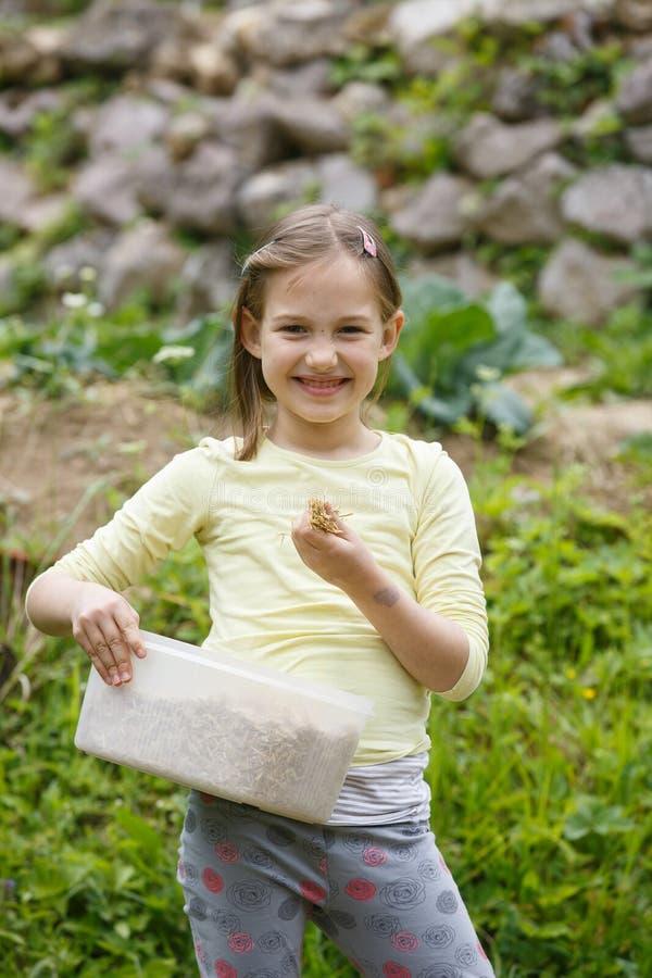 Petite fille travaillant dans le jardin image libre de droits