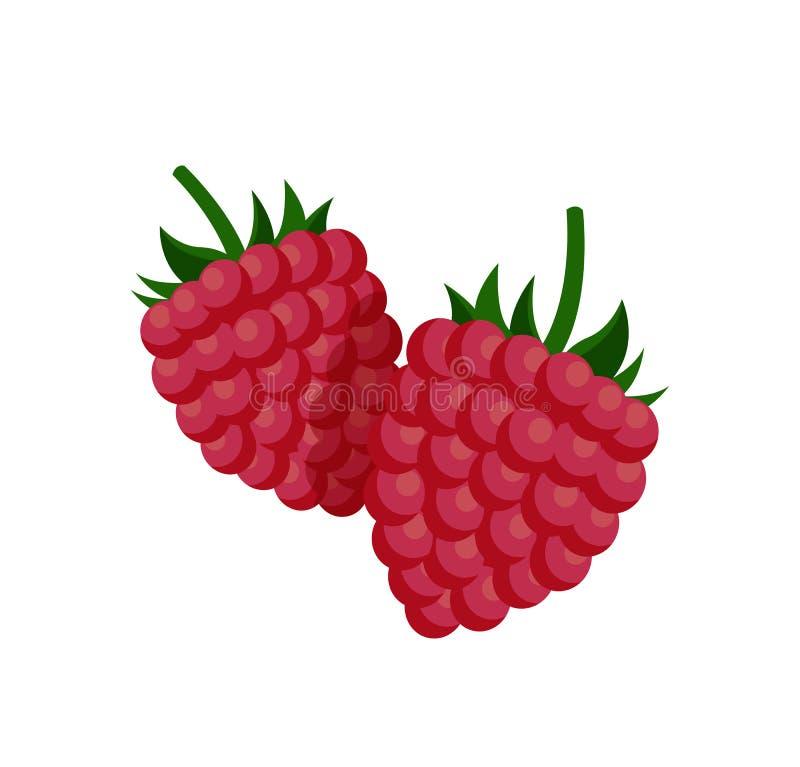 Petite framboise douce avec l'affiche de Fruit-tige illustration libre de droits