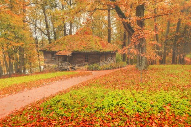 petite maison en bois dans la for t paysage brumeux d 39 automne photo stock image 60146300. Black Bedroom Furniture Sets. Home Design Ideas