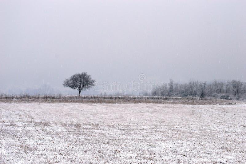 Petite maison la nuit dans la neige images libres de droits