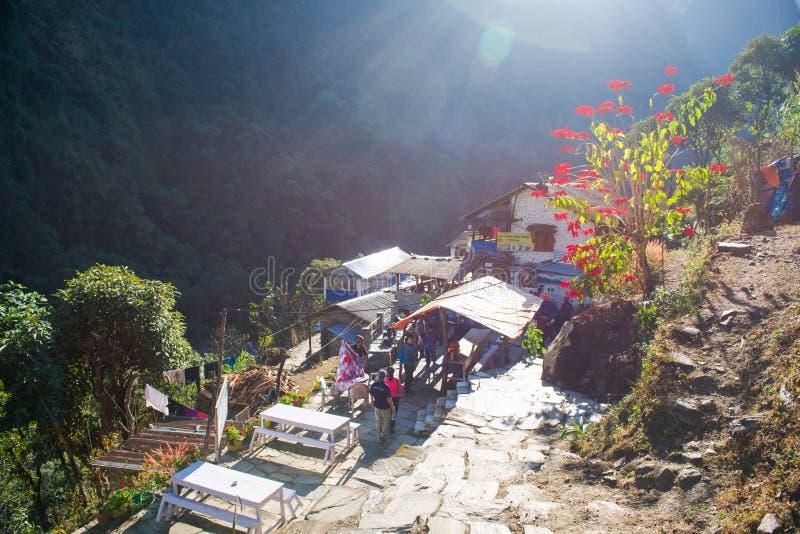 Download Petite Maison Sur Le Chemin Au Camp De Base D'Annapurna Image stock éditorial - Image du montagne, annapurna: 87703569