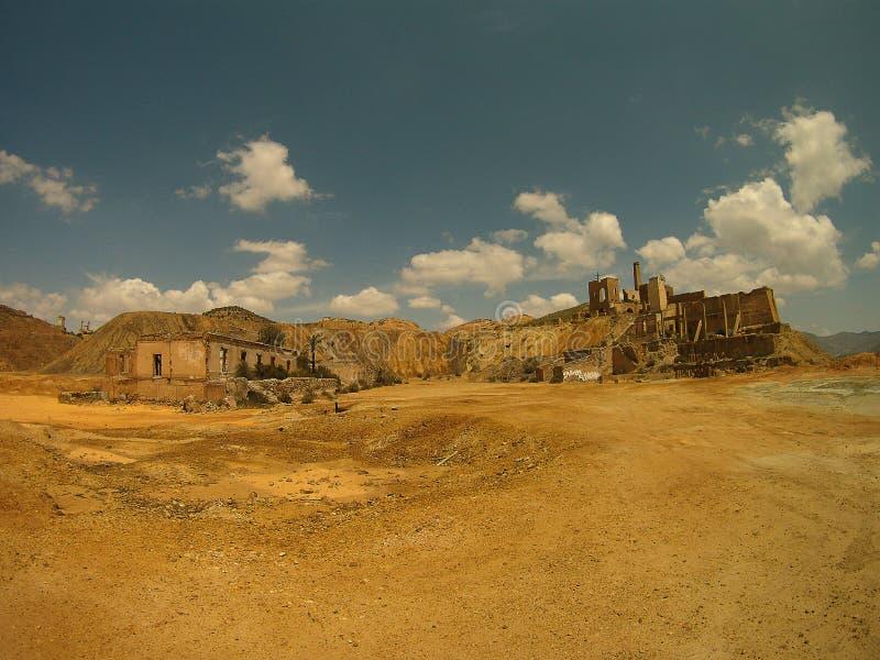 Petite oasis dans le désert images libres de droits