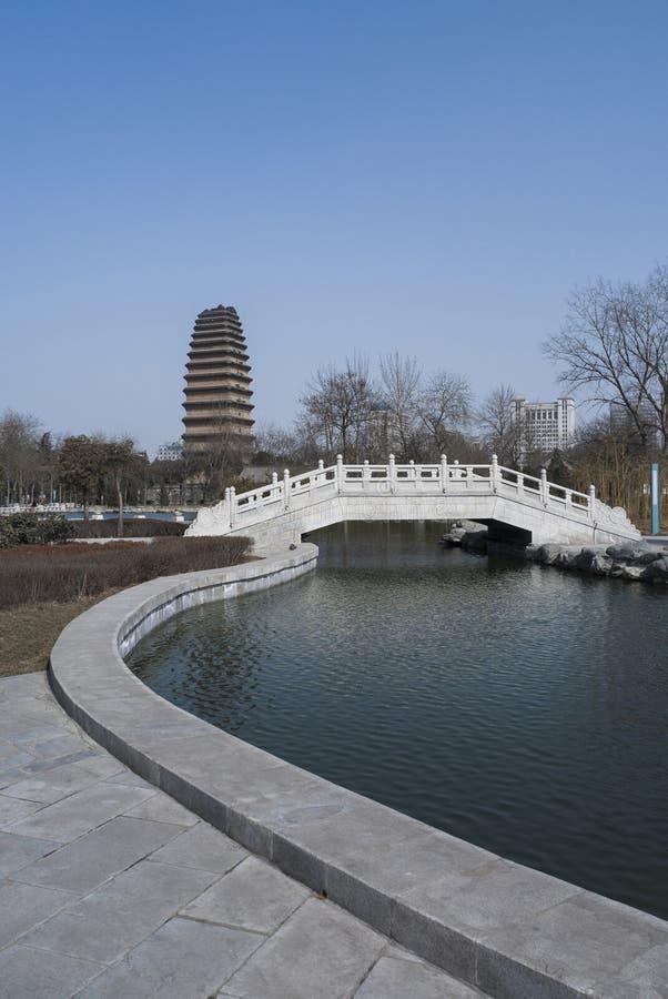 Petite pagoda sauvage d'oie photographie stock libre de droits