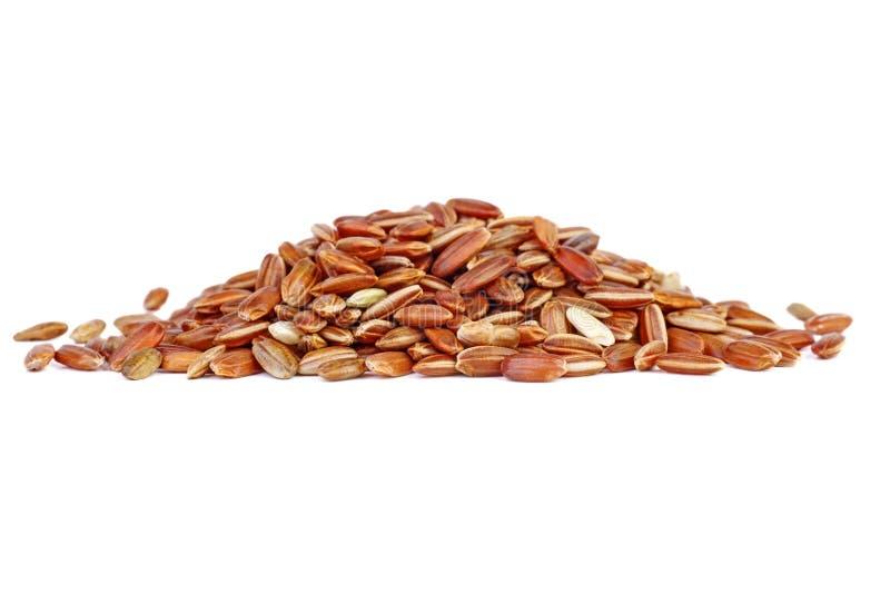 Petite pile de riz rouge photos stock
