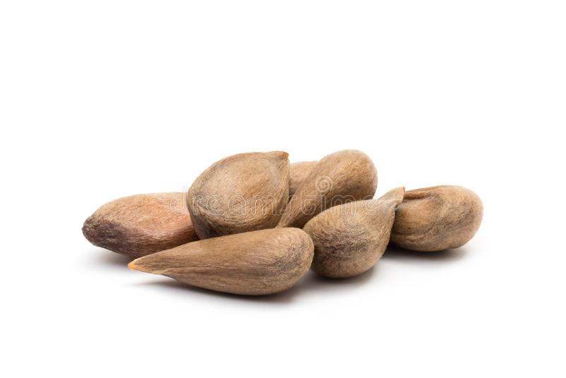 Petite pile des graines de pomme photographie stock libre de droits